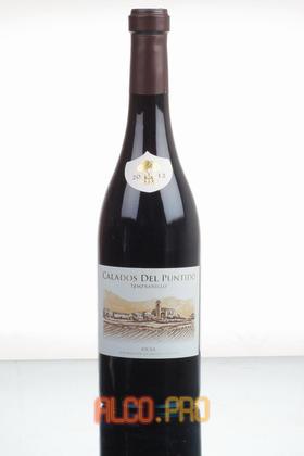 Vinedos de Paganos Calados de Puntido Испанское вино Каладос дель Пунтидо
